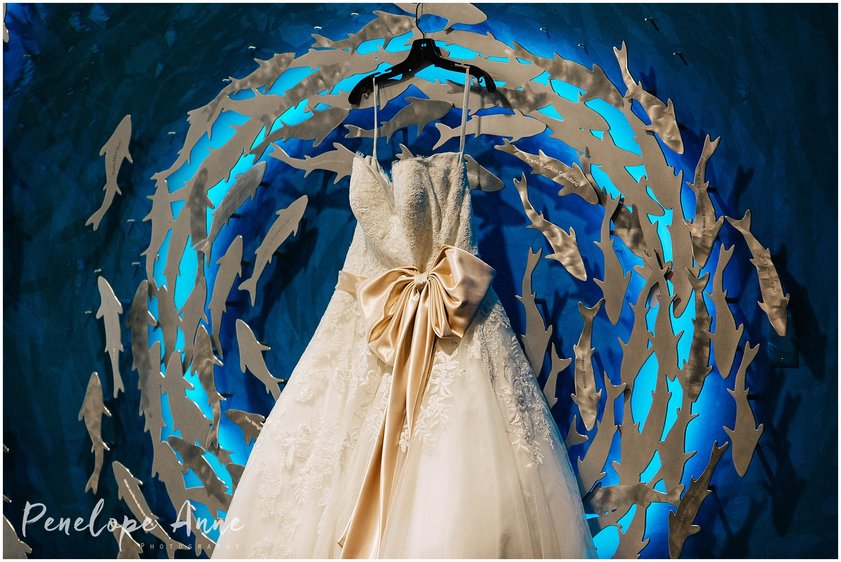 Wedding Dress At The Florida Aquarium